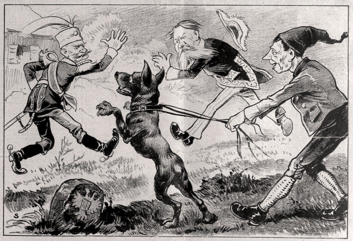 Kralj Petar I : Austrijska ratna propaganda od 12. jula 1914.
