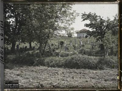 Seosko groblje u okolini grada Kruševca 1913. g.