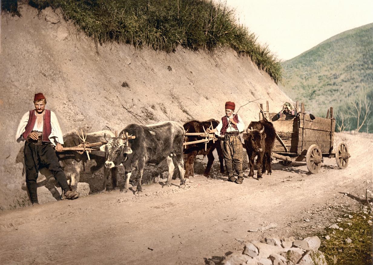 Seoska zaprega u Bosni oko 1900. godine (HQ)