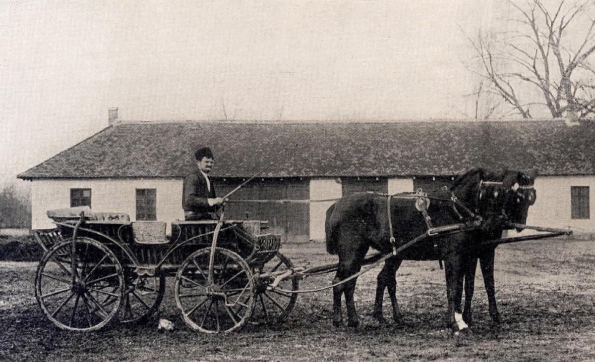 Srpska zaprega. Snimak M. Jovanović, dvorski fotograf (Narodno dobro Topčider, 1900)